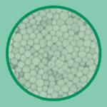 Polystyrène biodégradable